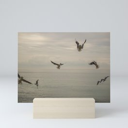 Seagulls flying in a cloudy day of winter Mini Art Print