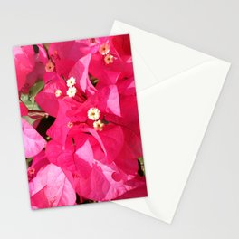 flowr Stationery Cards