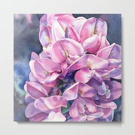 Pink acacia Metal Print