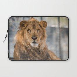 Lambert the Lion All Grown Up Laptop Sleeve