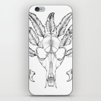 coyote iPhone & iPod Skins featuring Coyote by Frida Quennerstedt