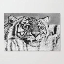 Tiger Pillow Canvas Print