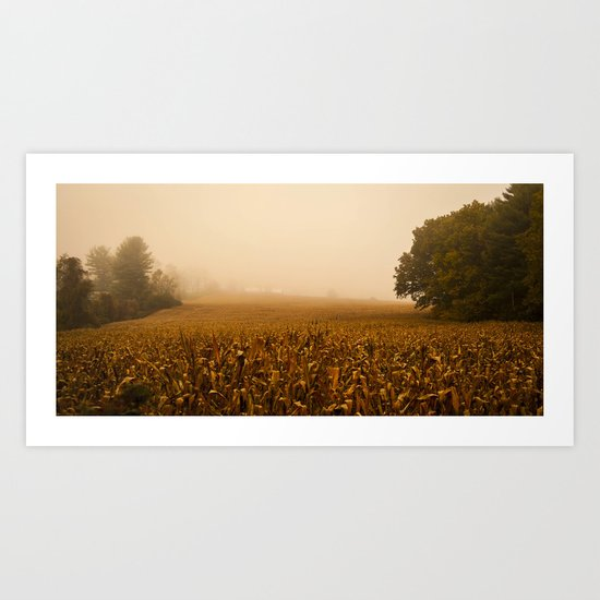 Fog In The Corn Field (A New England Morning)  Art Print