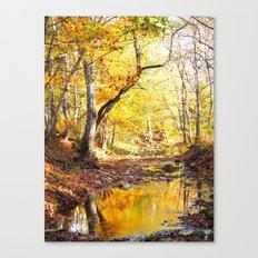 fall 2016 Canvas Print