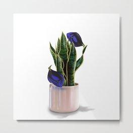 Blue Tang & Snake Plant Metal Print