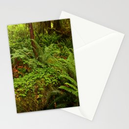 In The Cold Rainforest Stationery Cards