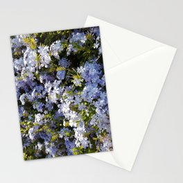 a violet flower in the heart of Athens Stationery Cards