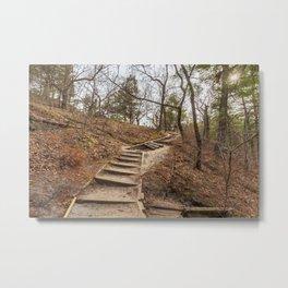 through the illinois woods Metal Print