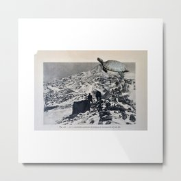Turtle #12 (Mountain Landscape) [Cecilia Lee] Metal Print