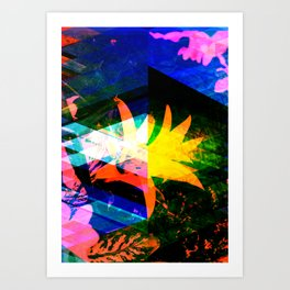 Crystal2nd Art Print