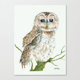 WISE KEEPER OF SPIRITS Canvas Print