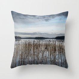 Autumn Sea Throw Pillow