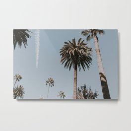 Palm Trees IV / Los Angeles, California Metal Print