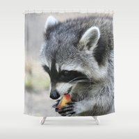 racoon Shower Curtains featuring Racoon 003 by jamfoto