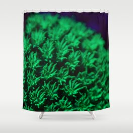 Fluorescent coral polyps reaching toward infinity Shower Curtain