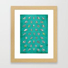 No. 41 - Skulls Framed Art Print