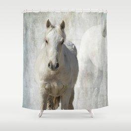Traveler Portrait No 2 Shower Curtain