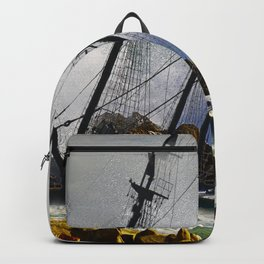 The Big Swell Backpack