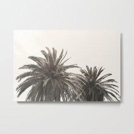 Palm Trees 01 Metal Print
