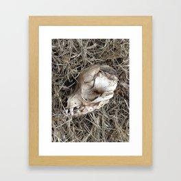 Mr. Puppy Framed Art Print