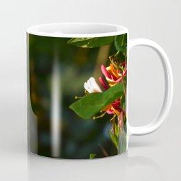 Hummingbird Near Totality 2017 Oregon Coffee Mug