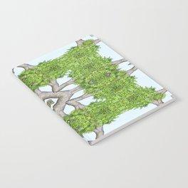 Bark Leaves Stone Kaleidoscope Art 7 Notebook