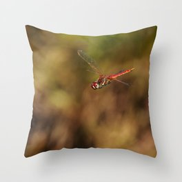Red dragonfly flying Throw Pillow