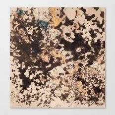 Splattered Space Canvas Print
