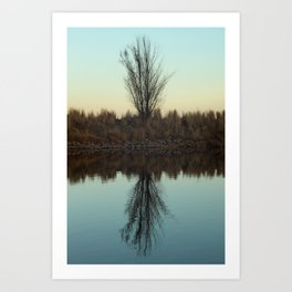 Wonderland Reflection Art Print