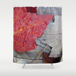 Red Sunset Maple Leaves Shower Curtain