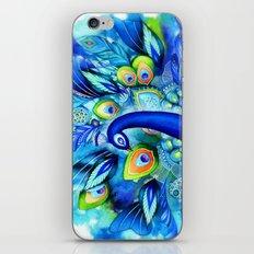 Peacock in Full Bloom iPhone & iPod Skin