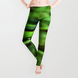 Dream of green future ... Leggings