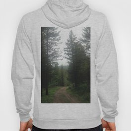 The Path is Made by Walking Hoody
