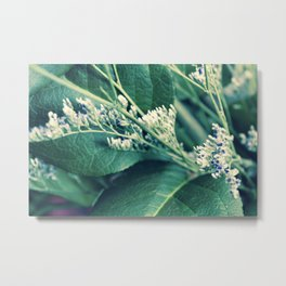 Buds & Leaves Metal Print