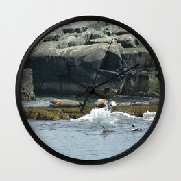 Seals relaxing on Coast of Maine Wall Clock