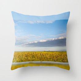 Morass grass in sun rising Throw Pillow