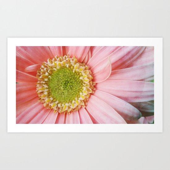 Flower #4 Art Print