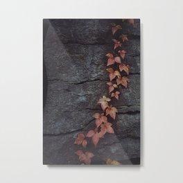 Autumn Rock, Secret Garden Metal Print