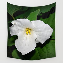 Trillium in the spotlight Wall Tapestry