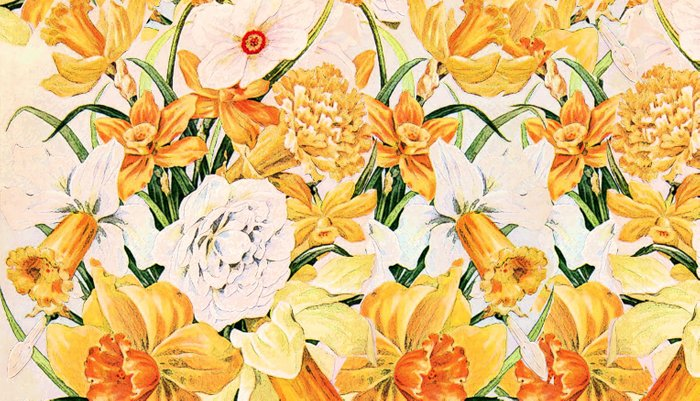Wordsworth  and the daffodils. Pillow Sham