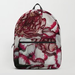 Very nice colorful carnation close up Backpack