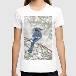 Snow Jay: American Blue Jay T-shirt