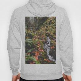 PNW Fall Waterfall Hoody