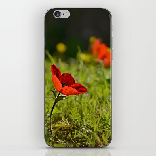 Solitary Anemone iPhone & iPod Skin
