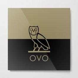 OvO Metal Print