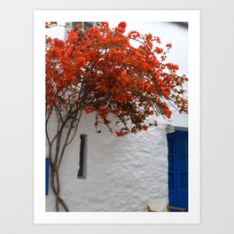 Bougainvillea at a greek island Art Print