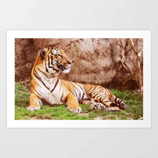 Malayan Tiger II Art Print