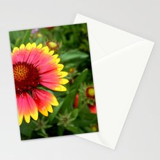 Summer Colours Stationery Cards