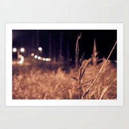 Late Night Photography Art Print