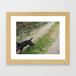 Dogs just want to have Fun Framed Art Print